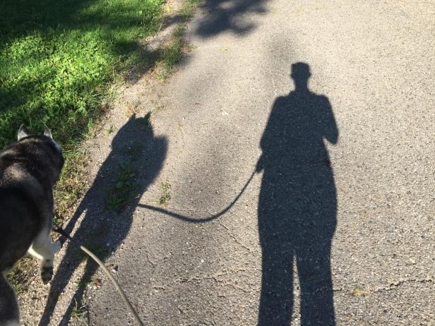 woman walking with husky