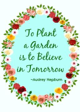 planting-a-garden-quotes-garden-quotes-and-poems-grow-garden-quotes