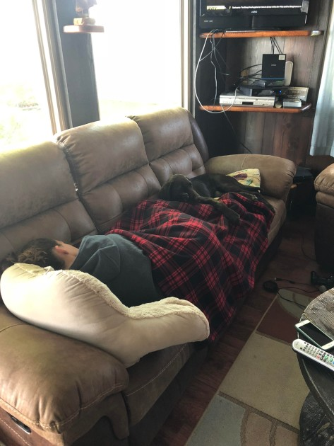 woman asleep on couch with chocolate lab